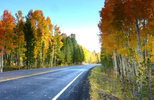 Park City Fall Scenic Drives