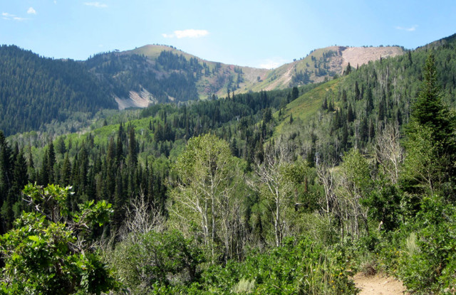 Park City Hiking Trails